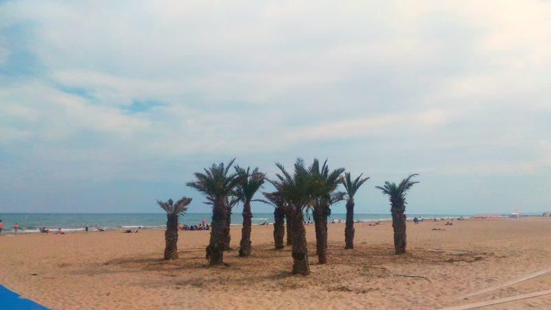 Volunteers explore Narbonne Beaches