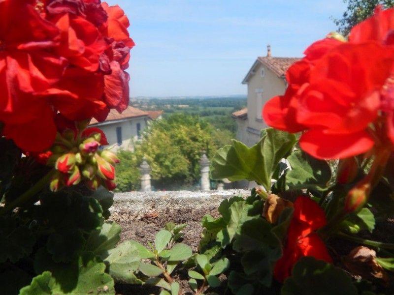 aubeterre roses